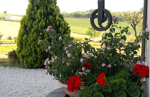 country house ostra senigallia